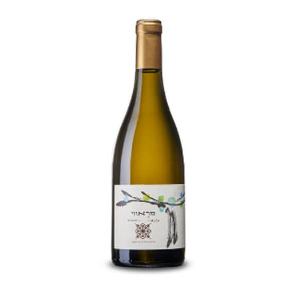יין רקנאטי מראווי