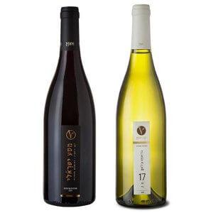 זוג יינות מסע ישראלי לבן + אדום